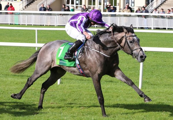 Capri Winning The Gr 2 Beresford Stakes At The Curragh