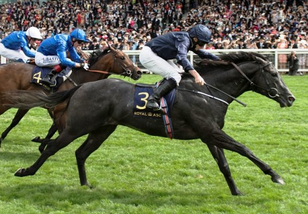 Caravaggio winning the G1 Commonwealth Cup at Royal Ascot