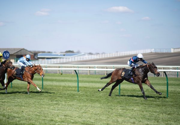 Carolus Magnus (Holy Roman Emperor) Wins His Maiden At Newmarket