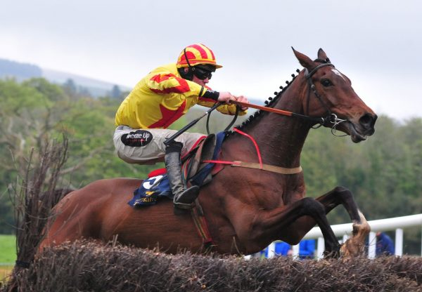 Carrig Hill (Milan) Wins At Monksgrange