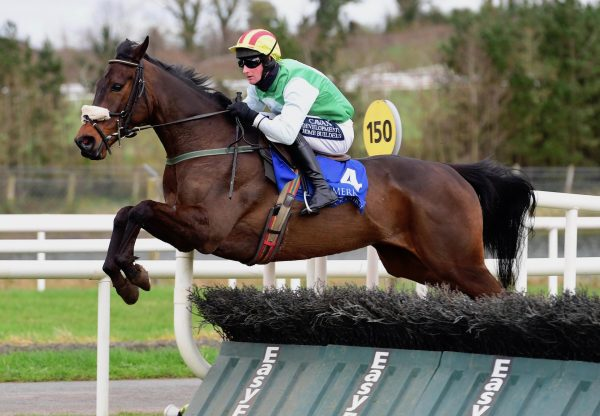 Castle Town House (Getaway) Wins The Maiden Hurdle At Limerick