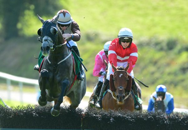 Cats For Cash (Mahler) winning a maiden hurdle at Downpatrick