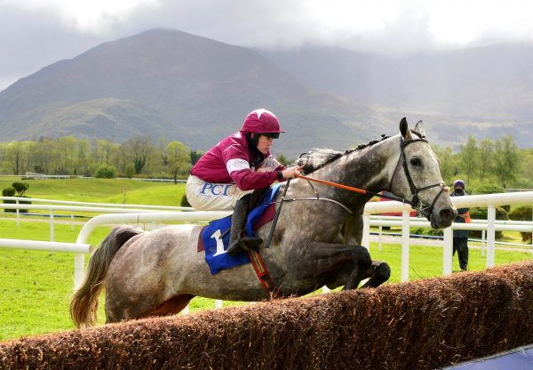 Cavalry Master (Milan) Lands The Novice Chase At Killarney