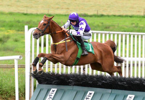 Charlie Siringo (Getaway) Wins The Maiden Hurdle At Downpatrick
