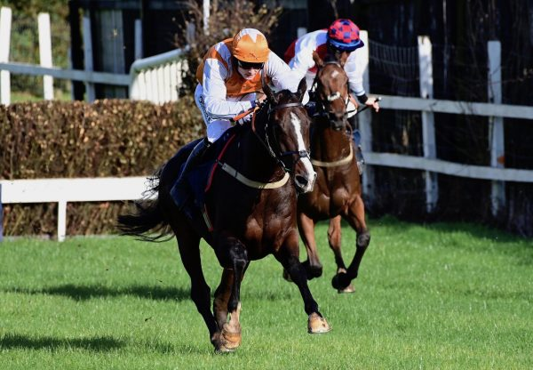 Chasing Fire Wins The 4 Yo Maiden At Tattersalls 1
