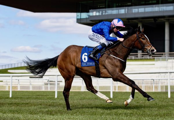Cheerupsleepyjean (Starspangledbanner) Impresses On Debut At The Curragh
