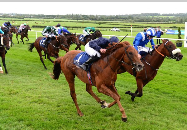 Chief Little Hawk (Air Force Blue) Wins the Irish EBF Ballyhane Stakes at Naas