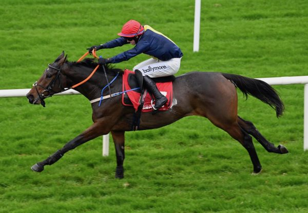 Choice Of Words (Yeats) Wins Her Hurdle Debut At Galway