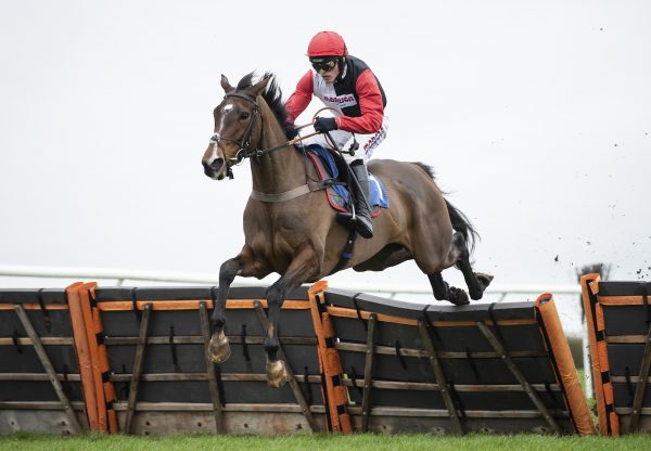 Cill Anna (Imperial Monarch) Doubles Up Over Hurdles at Wincanton
