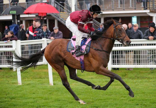 Coase Continues Fine Run For Zoffany