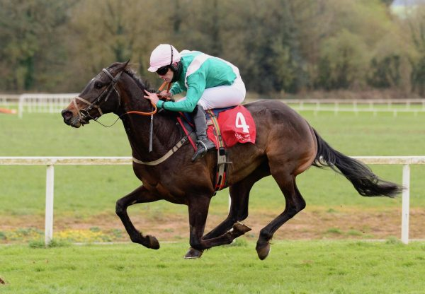 Cobblers Dream (Yeats) Wins The Bumper At Cork