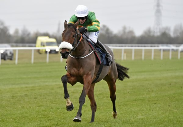Collooney (Yeats) winning a bumper at Huntingdon