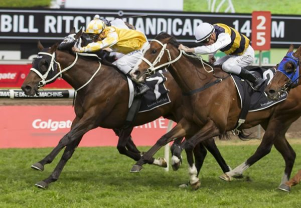 Comin' Through (Fastnet Rock) winning the G1 Doomben Cup at Morphettville Parks