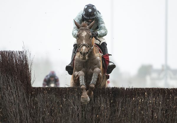 Commache Red (Mahler) Wins At Kempton Cropped