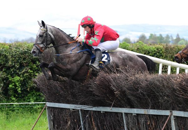 Constant Friday (Mahler) winning at Lisronagh Point-to-Point