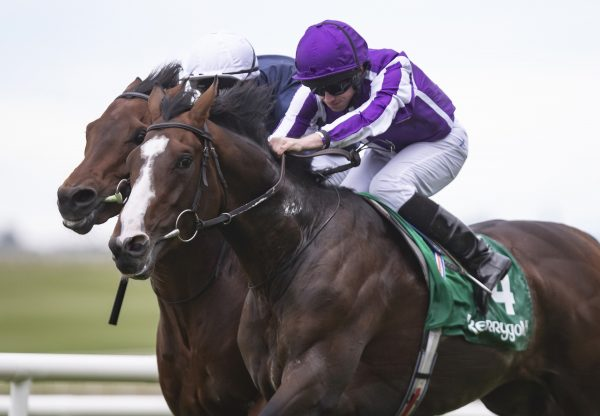 Early Doors (Soldier Of Fortune) Wins The Galway Plate
