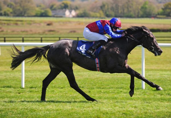Contarelli Chapel (Caravaggio) wins maiden at Naas