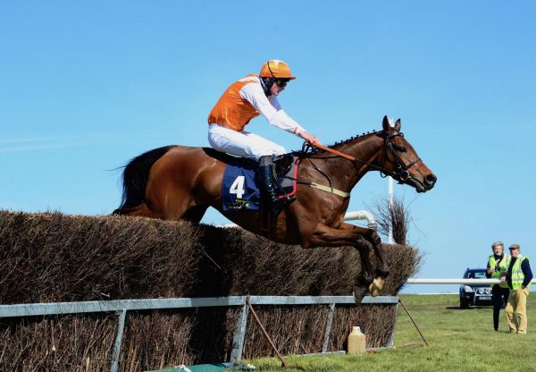 Corrigeen Rock (Westerner) Makes A Winning Debut At Fairyhouse