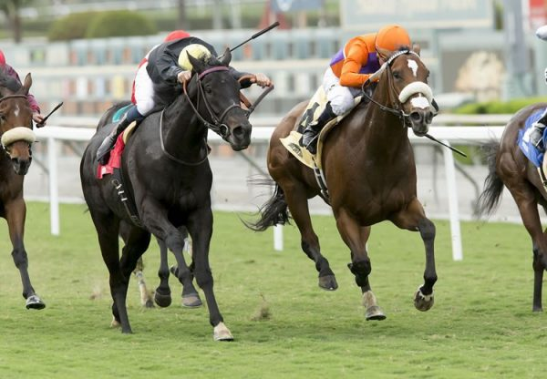 Iveagh Gardens (Mastercraftsman) winning the G3 Athasi Stakes at the Curragh