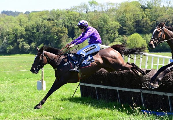 Croi Corcra (Soldier Of Fortune) Wins The 4 YO Mares Maiden At Grennan