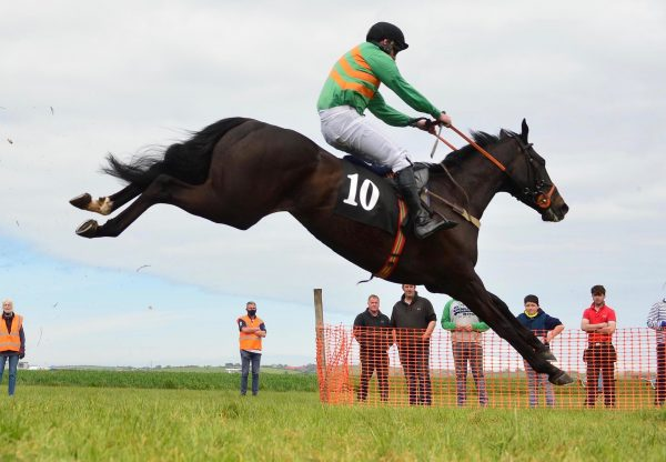 Crypto Currency (Yeats) Wins The 4YO Maiden At Kirkistown