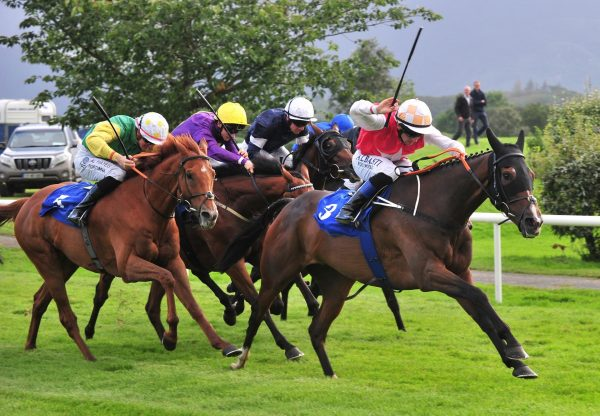 Davids Charm Wins Valuable Killarney Feature