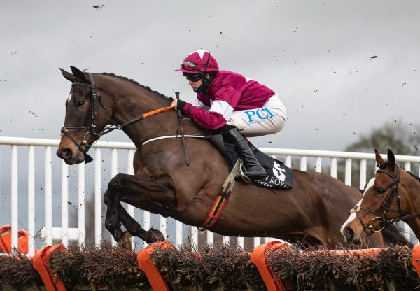 Decimation (Milan) Wins The Maiden Hurdle At Down Royal