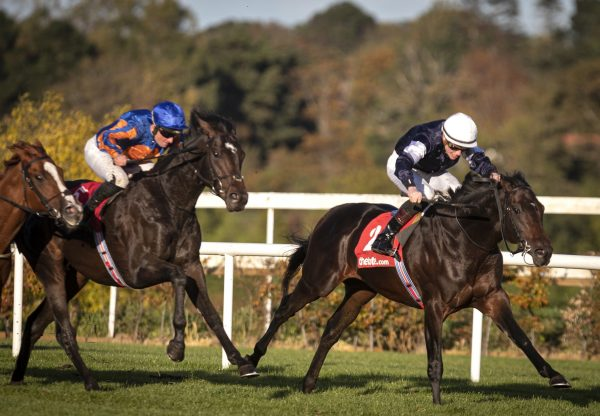Degraves (Camelot) winning the Gr.3 Eyrefield Stakes at Leopardstown