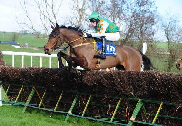 Deploy The Getaway (Getaway) winning a 4yo maiden point-to-point at Tallow