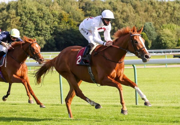 Dhabyah (Australia) Wins On Debut At Haydock