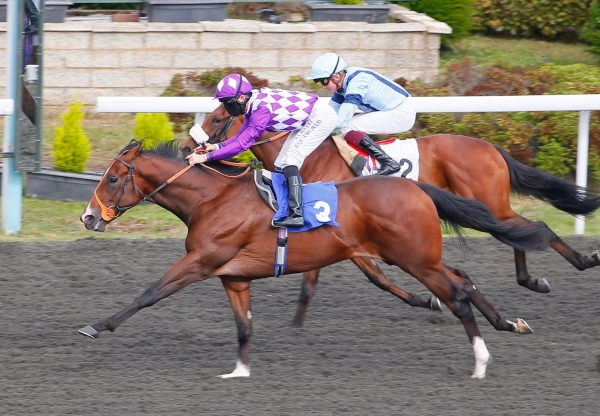 Dingle (Footstepsinthesand) Wins At Kempton