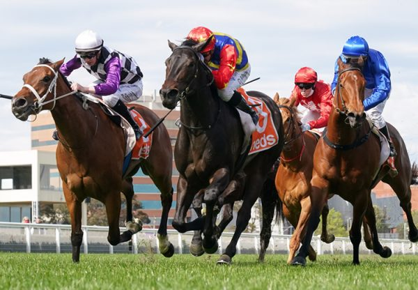 Dirty Thoughts (So You Think) winning the Gr.3 Northwood Plume Stakes at Caulfield