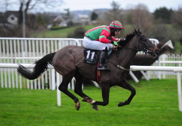 Dixie Flyer (Westerner) Wins The Bumper At Down Royal