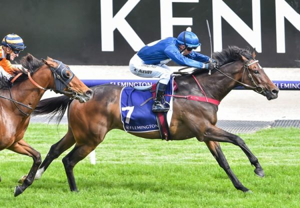 Do You Reckon (So You Think) winning the the VRC Melbourne Cup Carnival Country Final at Flemington