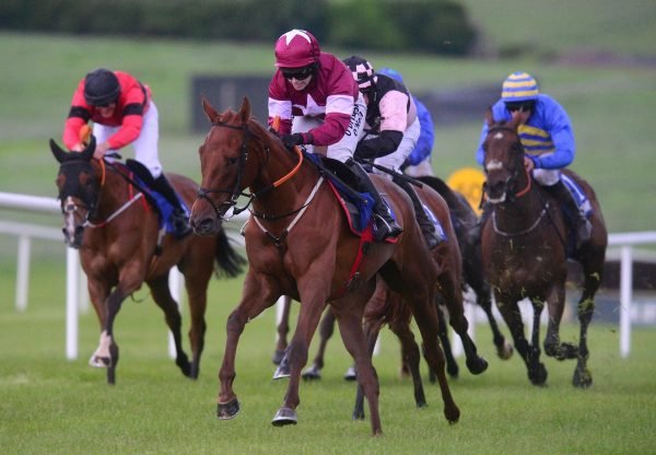 Domitian (Getaway) Wins At Clonmel