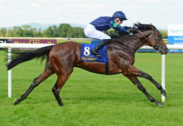 Shadow Hero (Pierro) winning the Gr.3 Gloaming Stakes at Rosehill