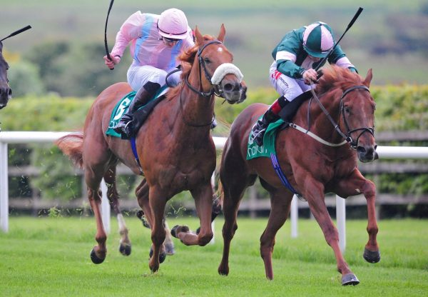 Double Martini Becomes The Latest Winner By Mastercraftsman