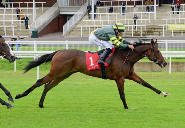 Drombeg Banner (Starspangledbanner) Wins His Maiden At Cork