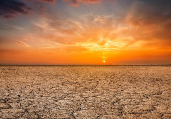 Drought image for Charity Auction