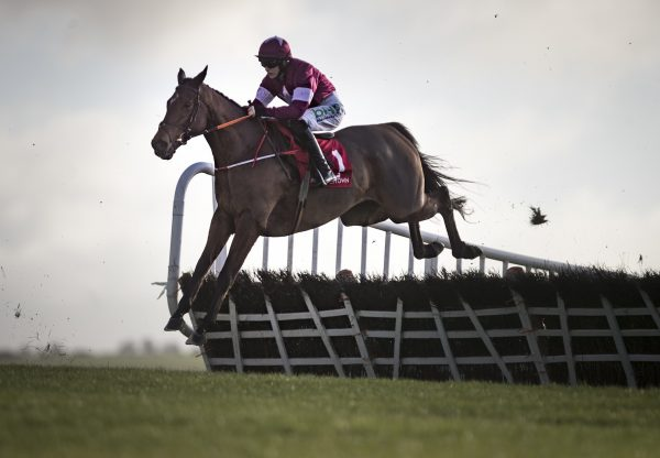 Due Reward Westerner On His Way To Winning The Rated Novice Hurdle At Punchestown