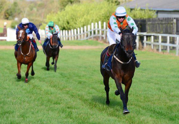 Dunboyne (Yeats) Wins At Tattersalls