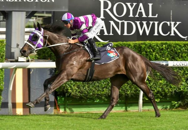 Easifar (Pride Of Dubai) winning at Randwick