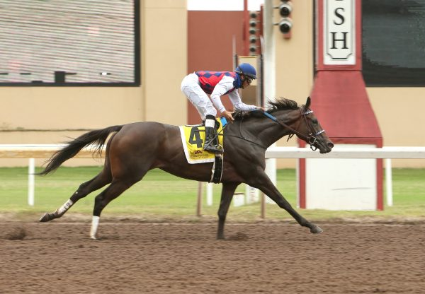 Envoutante (Uncle Mo) Gr.3 Remington Park Oaks