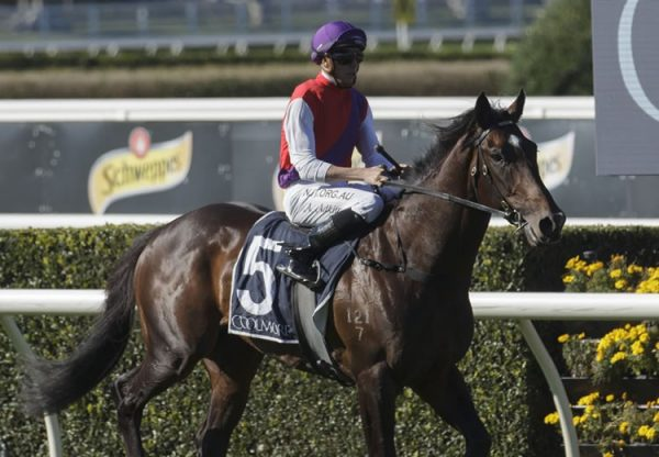 Exhibition (Vancouver) winning at Randwick