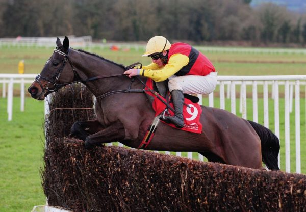 Exit To The West (Westerner) Wins The Beginners Chase At Cork