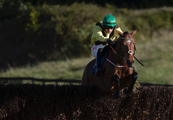 Fairyhill Run (Mahler) Lands The Beginners Chase At Limerick