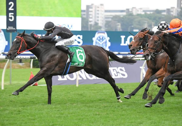 Fasika (So You Think) wins the Gr.2 Sapphire at Randwick