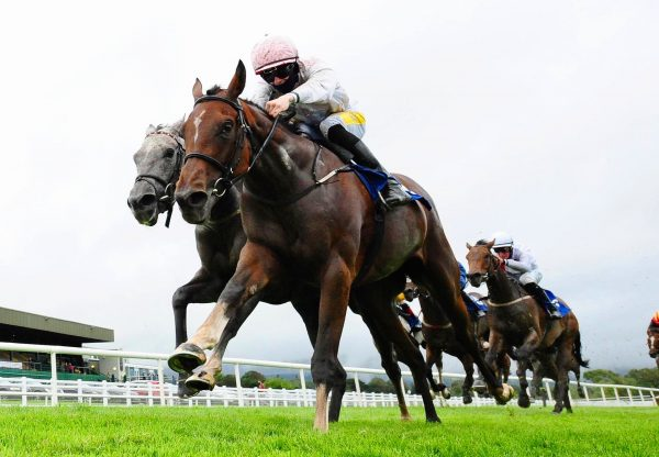 Shattered Love (Yeats) winning the G1 Neville Hotels Novice Chase at Leopardstown