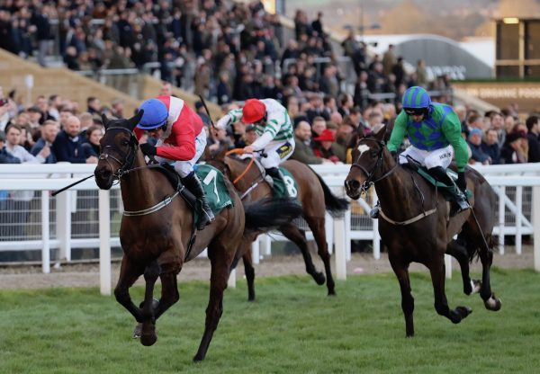 Ferny Hollow (Westerner) wins the Gr.1 Champion Bumper at Cheltenham