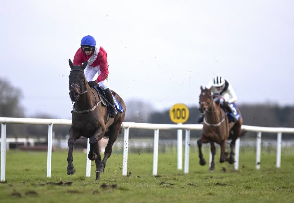 Ferny Hollow (Westerner) Wins The Bumper At Fairyhouse